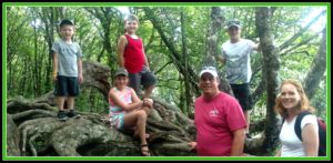 tRR family by mountain tree